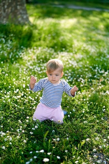 L'enfant est assis sur ses genoux levant les mains sur une pelouse verte avec des marguerites blanches