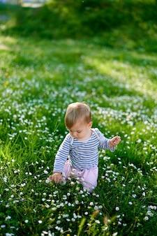 L'enfant est assis sur ses genoux sur une pelouse verte avec des marguerites blanches