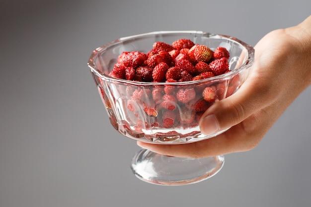 Un enfant est titulaire d'un bol en verre avec des fraises rouges mûres. fermer.
