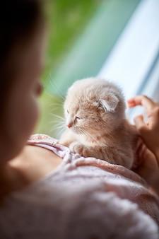 Enfant fille joue avec un petit chaton ludique au rebord de la maison.