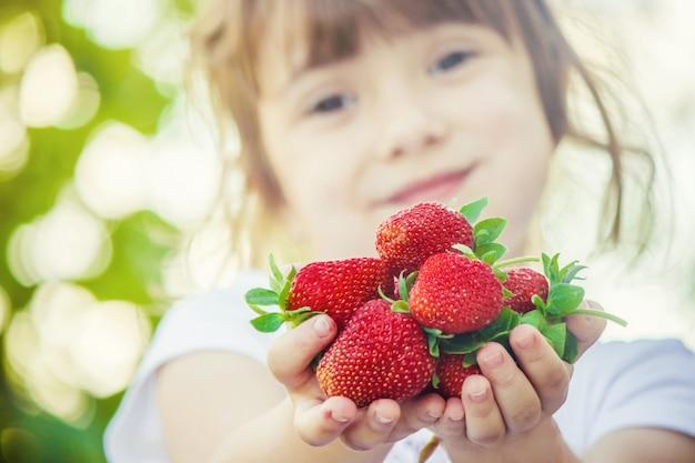 Enfant et fraise. mise au point sélective. nourriture et boisson.