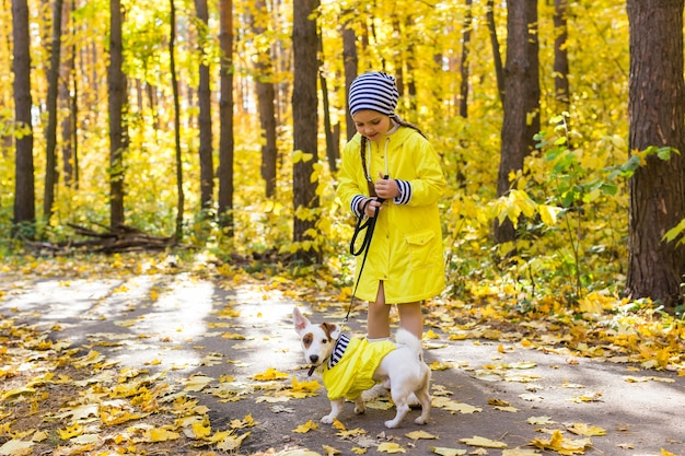 Enfant jouant dans le parc de l'automne avec un jack russell terrier. kid et chien jack russell terrier.
