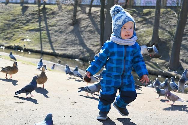 L'enfant joue dans la rue avec des pigeons. enfant et pigeons.
