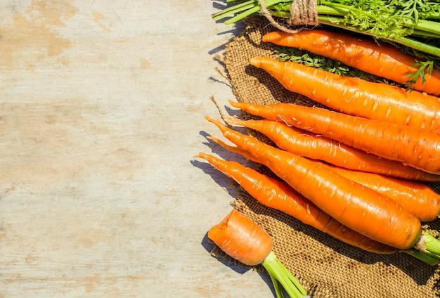 Enfant et légumes bio à la ferme. mise au point sélective.