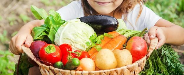 Enfant et légumes à la ferme. mise au point sélective. nmature.