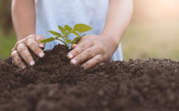 Enfant main plantant un jeune arbre sur un sol noir comme sauver le concept du monde