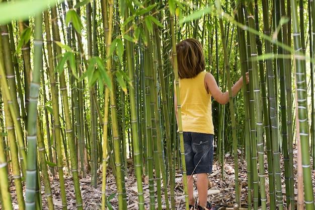 Enfant marchant à travers une forêt de bambous