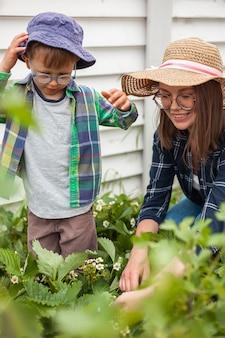Enfant et mère jardinage dans le jardin des fraisiers dans l'arrière-cour
