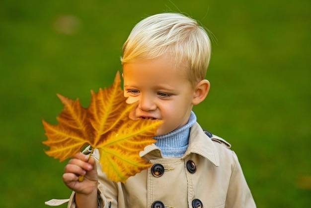 Enfant mignon tenant des feuilles d'automne dans la nature enfant garçon marchant dans le parc d'automne feuillage d'automne
