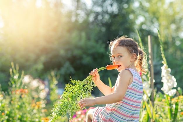 Un enfant mord des carottes biologiques fraîches dans un jardin naturel, des aliments sains pour les enfants en été