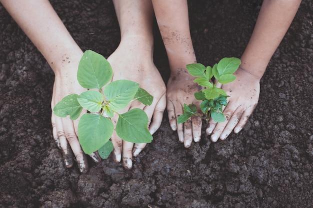 Enfant et parent main plantant un jeune arbre sur un sol noir ensemble comme sauver le concept du monde