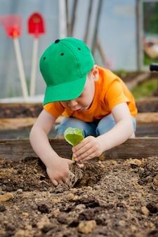 Enfant plante un jeune arbre
