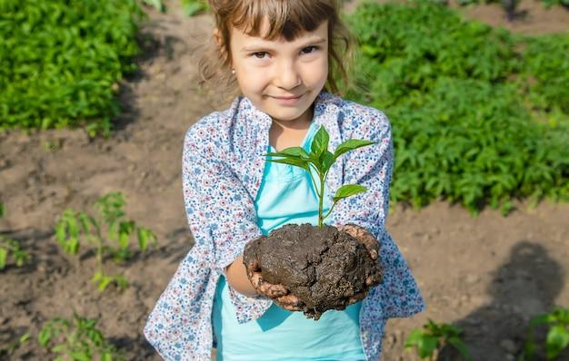 Enfant des plantes et arrosage des plantes dans le jardin.