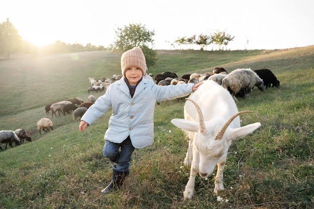 Enfant plein de coups et chèvre mignonne