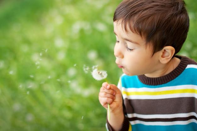 Enfant, souffler, pissenlit