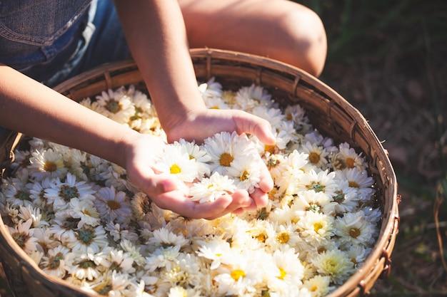 Enfant tenant de belles fleurs dans le panier de fleurs