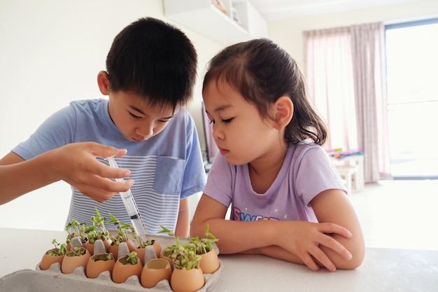 Enfants asiatiques arrosant des plants de jeunes en coquille d'oeufs, éducation montessori