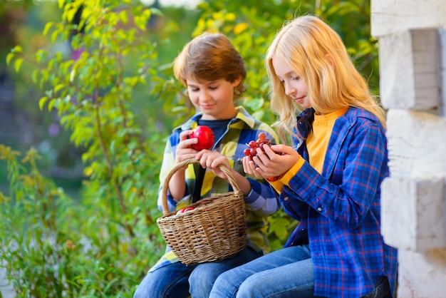 Enfants ayant pique-nique en plein air