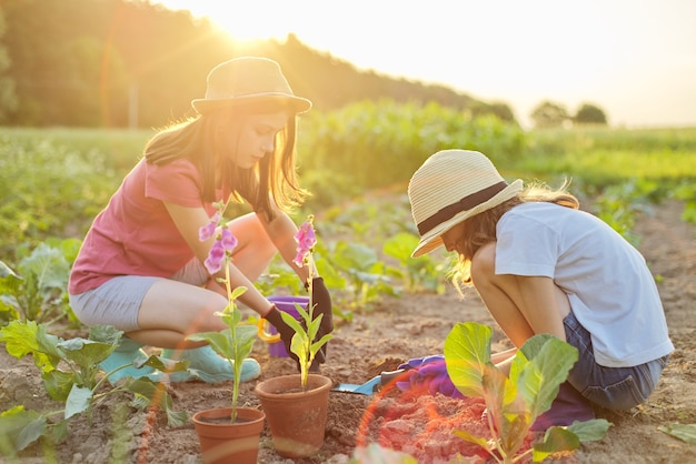 Enfants deux belles filles dans des chapeaux avec des fleurs dans des pots, des gants avec des outils de jardin, plantant des plantes dans le sol. fond printemps été paysage, nature, ciel