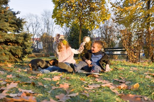 Enfants heureux jouant avec chien dans le parc d'automne ensoleillé