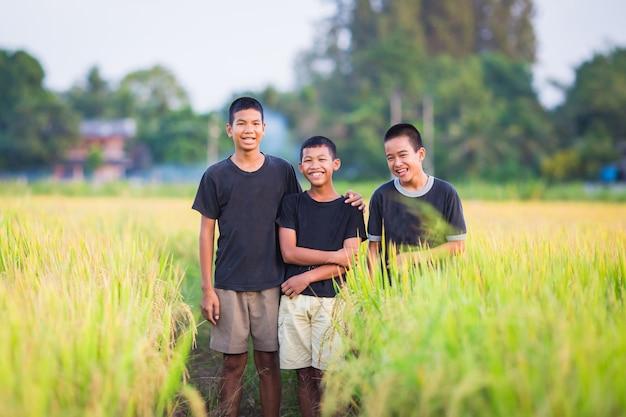 Les enfants innocents jouent dans les rizières.