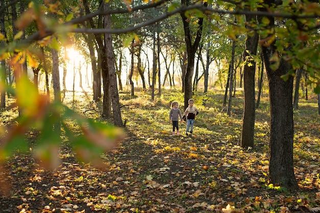 Des enfants mignons, un garçon et une fille marchent et jouent dans la forêt d'automne.