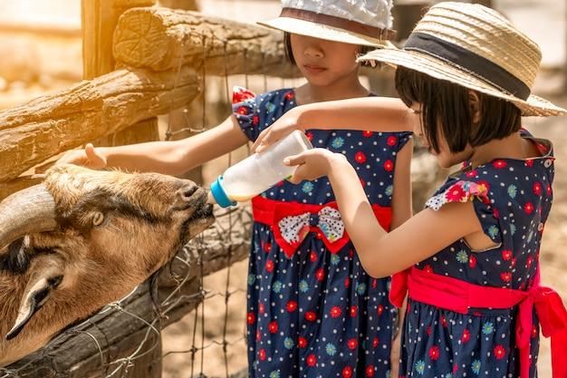 Enfants nourrissant le lait à la chèvre