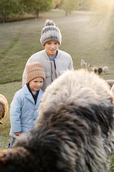 Enfants de plan moyen avec des moutons