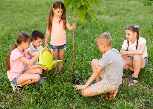 Enfants plaquant un arbre ensemble