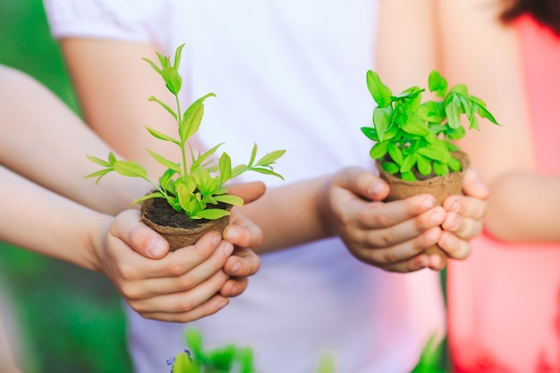 Enfants tenant des plantes dans des pots de fleurs