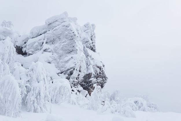 D'énormes rochers enneigés et des arbres couverts de givre sur un col de montagne en hiver