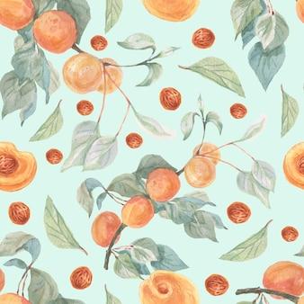 Ensemble aquarelle de fruits abricots modèle sans couture dessinés à la main