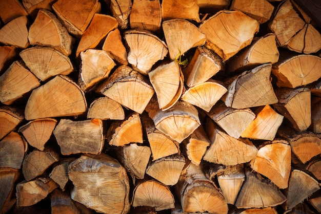 Ensemble de bois de chauffage