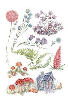 Ensemble champignons amanite fougère forêt herbes aquarelle maison et fleurs dessinées à la main