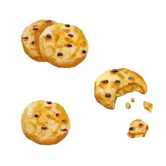 Ensemble de cookies ronds aquarelle avec du chocolat