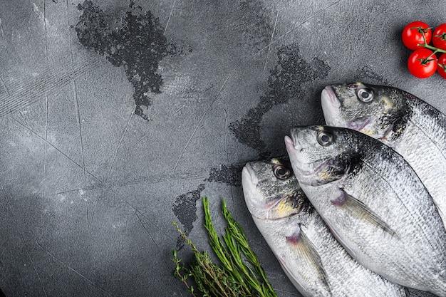 Ensemble cru de la dorade ou de la dorade dorée poisson orata aux herbes poivron lime tomate pour la cuisson et le gril sur fond texturé gris, vue de dessus avec un espace pour le texte.