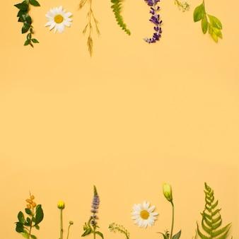 Ensemble de feuillage vert et de fleurs