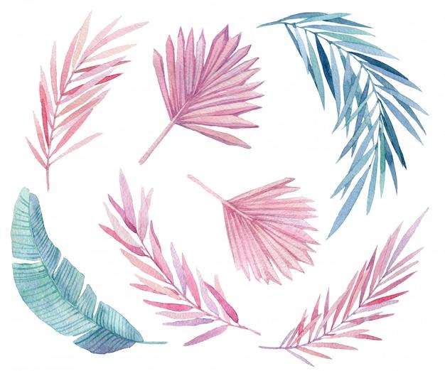 Ensemble de feuilles tropicales roses et bleues. jungle, illustrations aquarelles botaniques, éléments floraux, feuilles de palmier, fougère et autres. ensemble aquarelle dessiné à la main de feuilles et plante maison