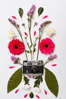 Ensemble de fleurs, feuilles et appareil photo rétro
