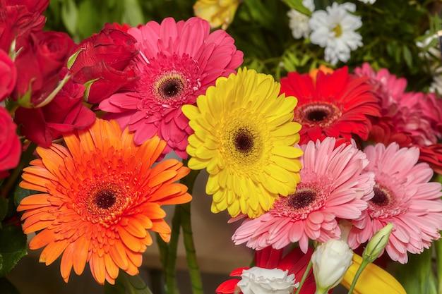 Ensemble de fleurs de gerbera rouge, rose, jaune et orange