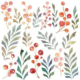 Ensemble floral dessiné main aquarelle avec feuilles branches baies rouges isolés sur fond blanc