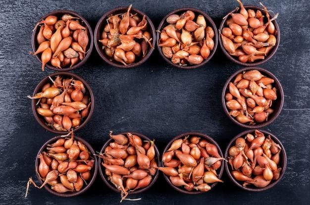 Un ensemble d'oignons ou de petites échalotes dans des bols de forme rectangulaire vue de dessus sur une table sombre
