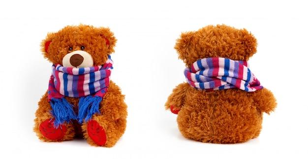 Ensemble d'ours bruns bouclés en peluche dans une écharpe de couleur tricotée isolée
