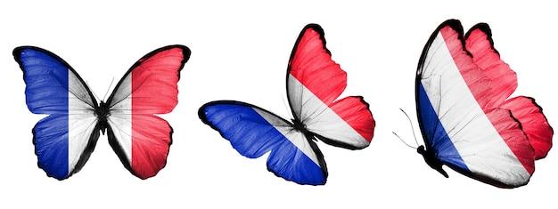 Un ensemble de papillons avec le drapeau de la france sur les ailes isolés sur fond blanc. photo de haute qualité