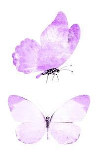 Ensemble de papillons violets isolés sur fond blanc. photo de haute qualité