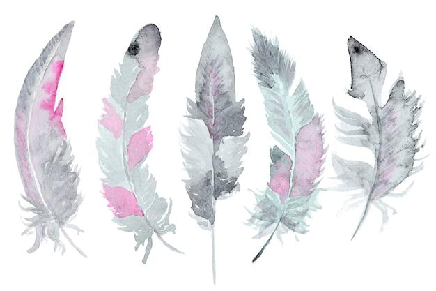 Ensemble de plumes aquarelles