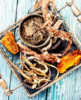 Ensemble de racines de plantes médicinales