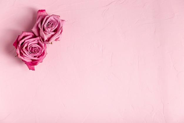 Ensemble de roses avec espace copie