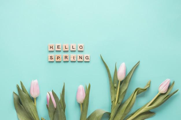 Ensemble de tulipes fraîches avec des feuilles vertes et bonjour mots printemps