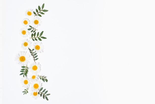 Ensemble vertical de fleurs